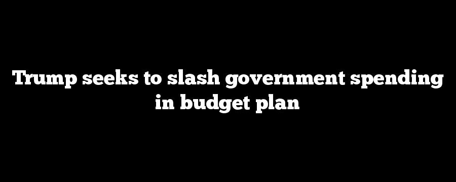 Trump seeks to slash government spending in budget plan